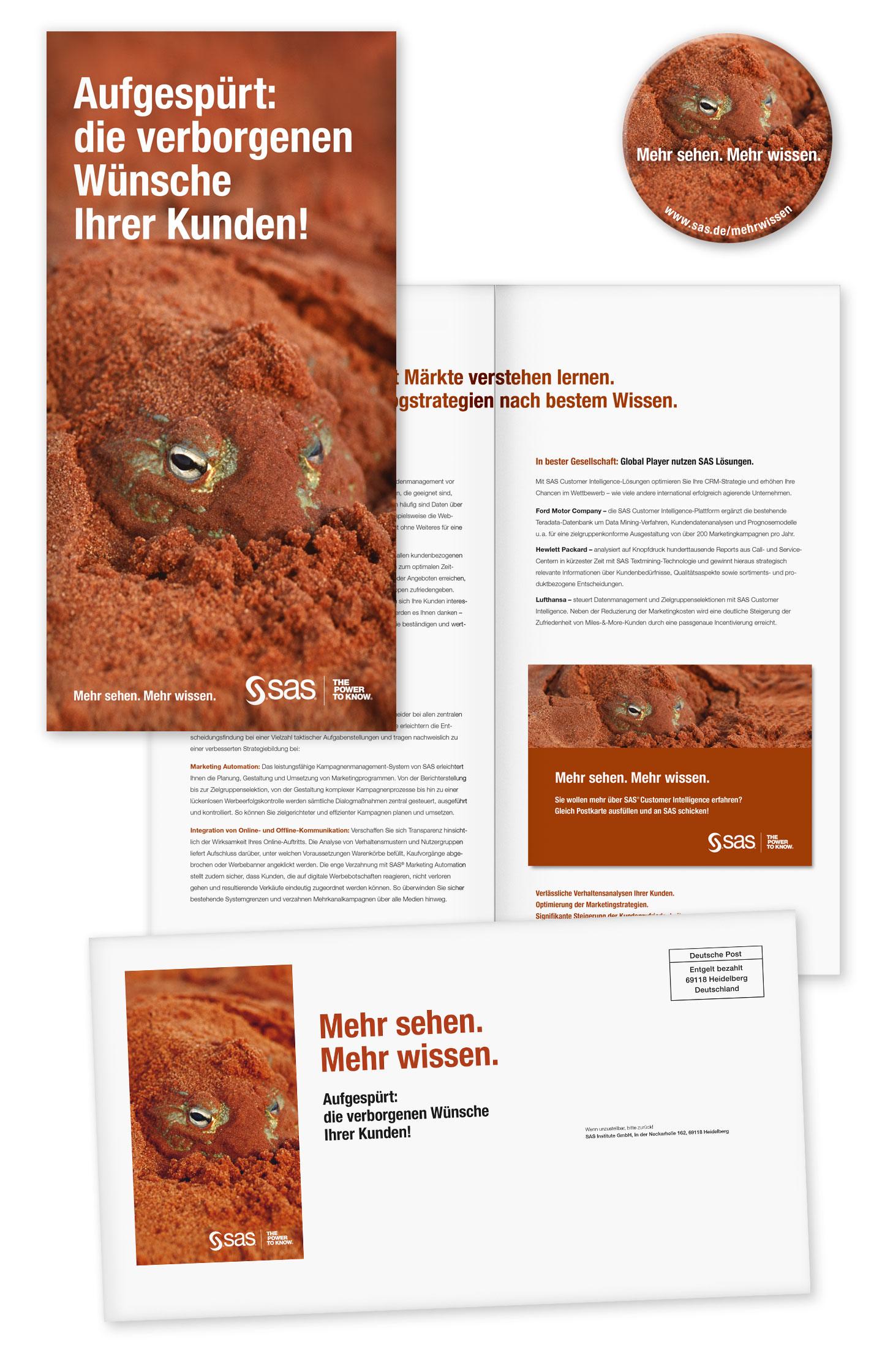 P12 Werbeagentur Heidelberg Referenz SAS Unternehmensweite Datenanalyse Mailing Stufe Frosch