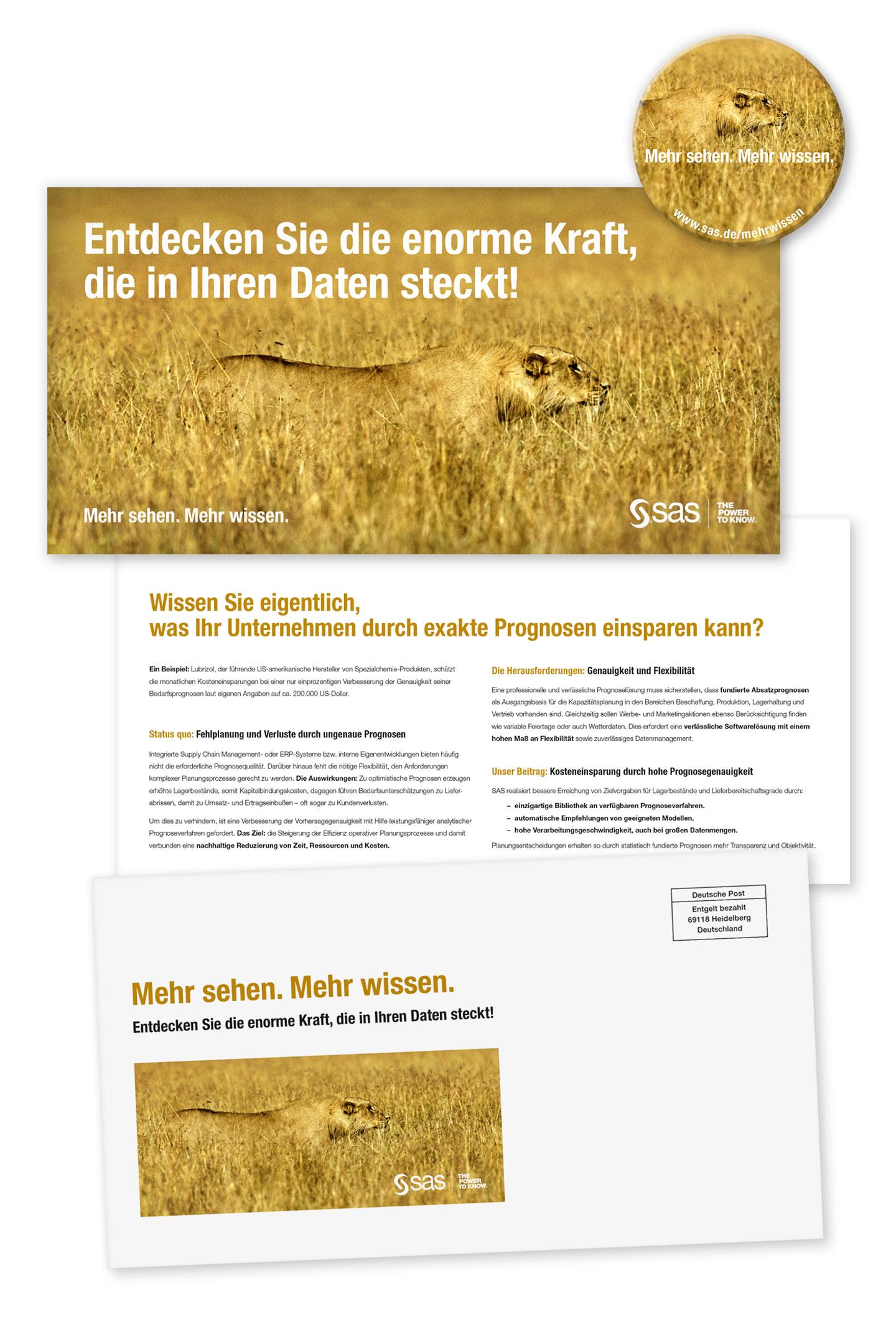 P12 Werbeagentur Heidelberg Referenz SAS Unternehmensweite Datenanalyse Mailing Stufe Loewe