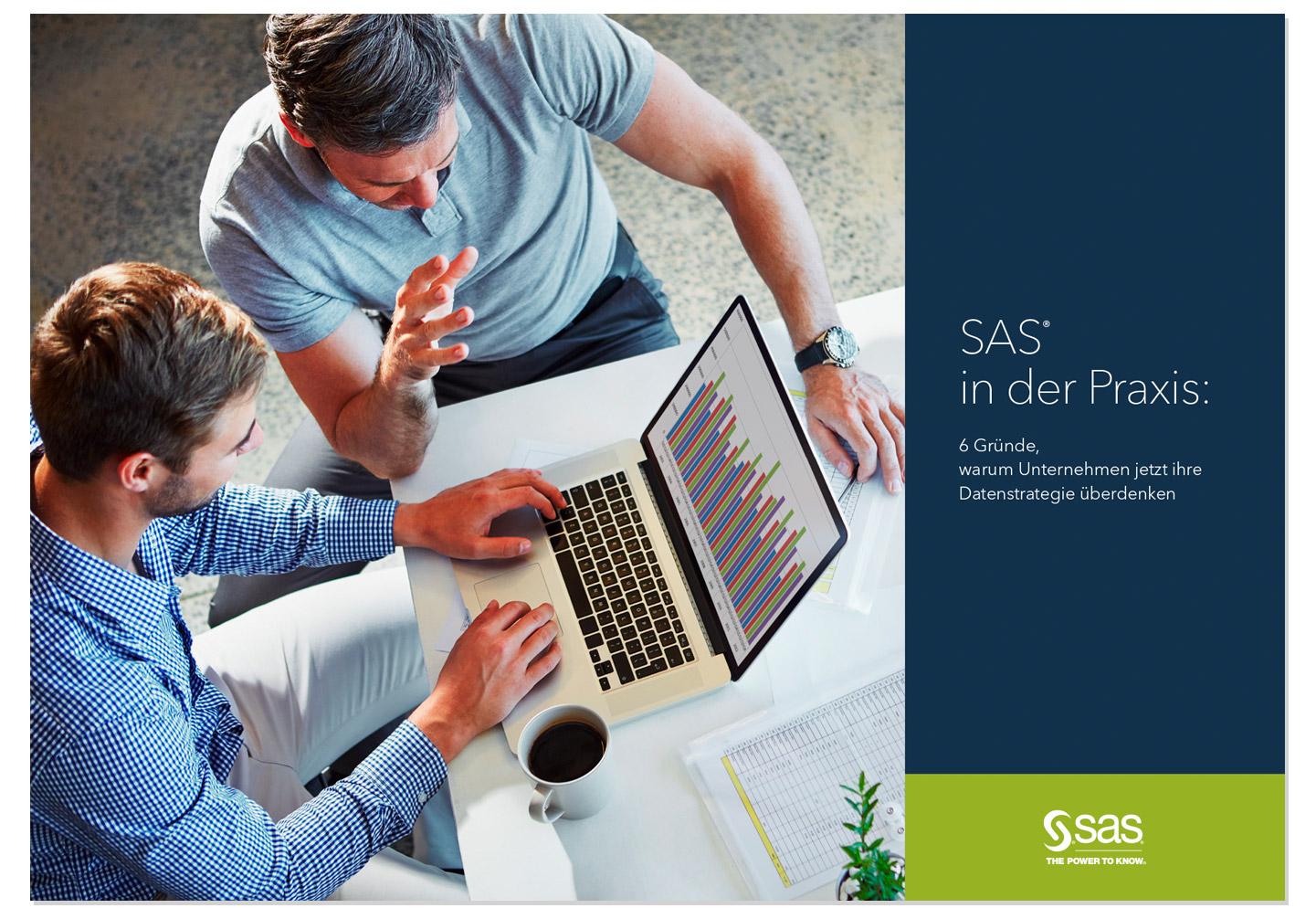 P12-Werbeagentur Heidelberg Projekt SAS E-Book