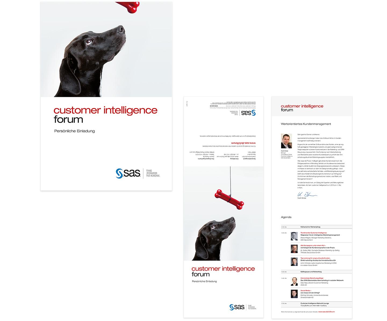 P12-Werbeagentur Direct Mailing Referenz SAS 2010